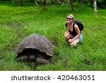 galapagos giant tortoise  | Shutterstock . vector #420463051