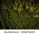 autumn forest aerial view | Shutterstock . vector #420676624