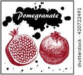 pomegranate vector hand drawn... | Shutterstock .eps vector #420722491