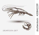 illustration ink seafood shrimp ... | Shutterstock .eps vector #420842239