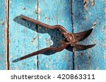 gardening pruning shears for... | Shutterstock . vector #420863311