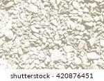 natural sea or ocean coast... | Shutterstock .eps vector #420876451