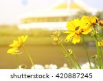 flower of love vintage | Shutterstock . vector #420887245