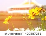 flower of love vintage | Shutterstock . vector #420887251
