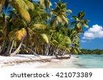 sandy caribbean beach with... | Shutterstock . vector #421073389