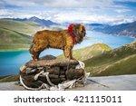 tibetan mastiff at the yamdrok... | Shutterstock . vector #421115011