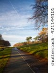 a road in the phoenix park ... | Shutterstock . vector #421144105