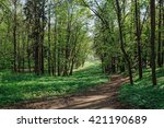 nature green trees with rural... | Shutterstock . vector #421190689