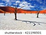 dead camelthorn trees against... | Shutterstock . vector #421198501