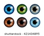 human eyeballs iris pupils set... | Shutterstock .eps vector #421434895