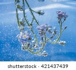 Flowers Under Water With Air...