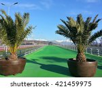 Palm trees and brightly colored track at the Olympic Park Sochi, Russia, December 25, 2014 - stock photo