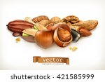 nuts  vector illustration... | Shutterstock .eps vector #421585999