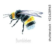 Hand Draw Watercolor Bumblebee...