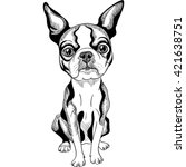 black and white serious dog... | Shutterstock . vector #421638751