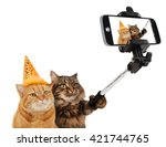 Stock photo funny cats are taking a selfie with smartphone camera celebrate birthday 421744765