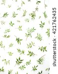 green branches on white... | Shutterstock . vector #421762435