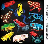 Frogs Set Colorful Low Poly...