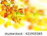 autumn landscape. beautiful... | Shutterstock . vector #421905385