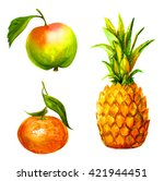 Juicy Fruit Set Watercolor ...