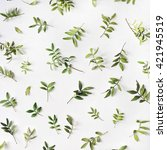green branches on white... | Shutterstock . vector #421945519