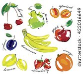 fruit set icons isolated on... | Shutterstock .eps vector #422016649