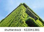 ivy green house wall | Shutterstock . vector #422041381