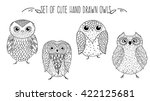 Stock vector vector set of owls hand drawing sketches 422125681