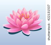 Pretty Pink Water Lily Or Lotu...