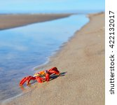 Colourful Red Crab Toy On A...