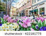 Scenery Of The Flower Bed In...