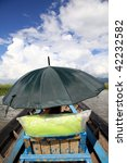 Women covered by an umbrella on a boat ride on a sunny day. - stock photo