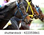 heads of racing horses before...   Shutterstock . vector #422353861