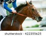 racing horse portrait in action | Shutterstock . vector #422355625