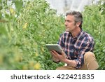 farmer in greenhouse checking...   Shutterstock . vector #422421835