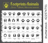 animals tracks   north american ... | Shutterstock .eps vector #422574751