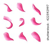 Stock photo digital illustration pink curly petals assortment design elements isolated on white background 422592997