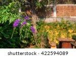 Purple Flowers Background In...