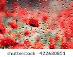 View Of The Poppies Through Th...