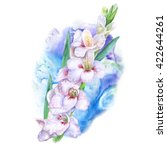 watercolor drawing of spring... | Shutterstock . vector #422644261