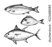 illustration ink sea tuna fish  ... | Shutterstock . vector #422688085