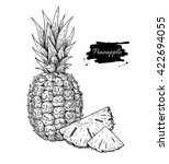 vector hand drawn pineapple and ... | Shutterstock .eps vector #422694055
