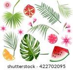 set of various exotic flowers ...   Shutterstock .eps vector #422702095