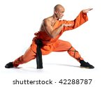 Shaolin Warriors Monk On White...