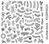 floral hand drawn vintage set.... | Shutterstock .eps vector #422893024