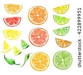 Set   Citrus Fruit  Slices Of...
