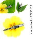 dental equipment and dental... | Shutterstock . vector #42291811