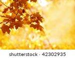autumn background | Shutterstock . vector #42302935