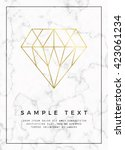 geometric design for poster ... | Shutterstock .eps vector #423061234