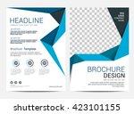 brochure template flyer design...   Shutterstock .eps vector #423101155